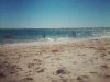 doddies-beach4