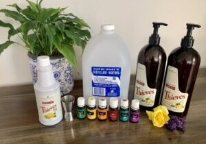 Young living laundry feature